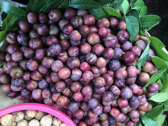 6 loại trái cây Trung Quốc đang tràn ngập chợ Việt Nam - ảnh 2