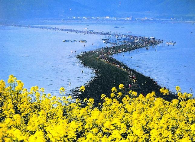 14 nơi không đi thì phí cả chuyến tham quan Hàn Quốc - ảnh 12