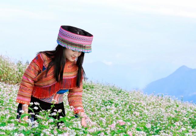 Lên cáp treo Fansipan ngắm hoa tam giác mạch mùa lễ hội  - ảnh 2