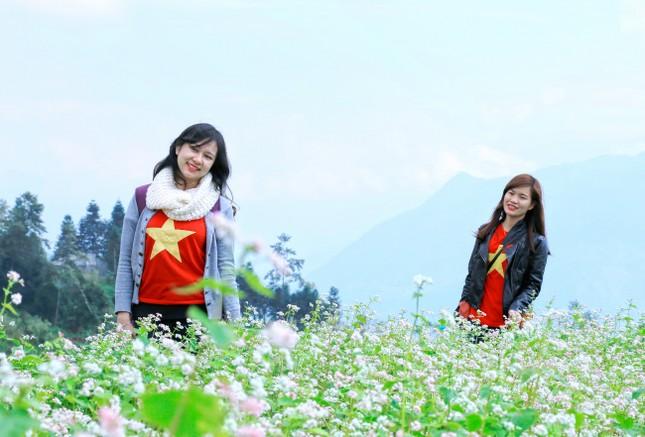 Lên cáp treo Fansipan ngắm hoa tam giác mạch mùa lễ hội  - ảnh 4