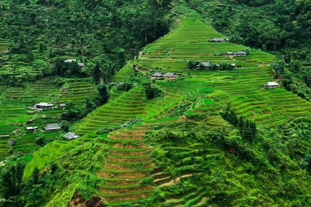 Việt Nam đẹp lung linh qua ống kính của nhiếp ảnh gia Pháp - ảnh 10