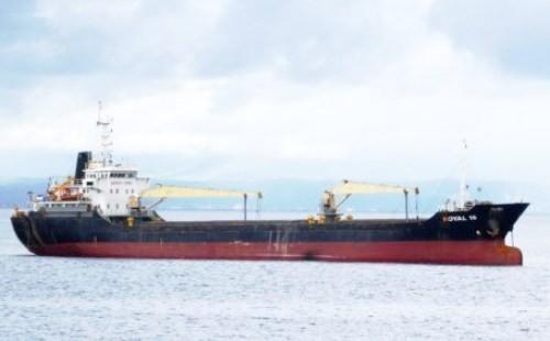 Cướp biển Philippines tấn công tàu Royal 16 bằng súng AK - ảnh 1
