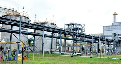 Hàng loạt sai phạm tại ba dự án nhiên liệu sinh học của PVN - ảnh 1