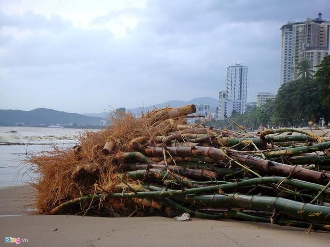 Bãi biển đẹp nhất thế giới xác xơ sau lũ - ảnh 5