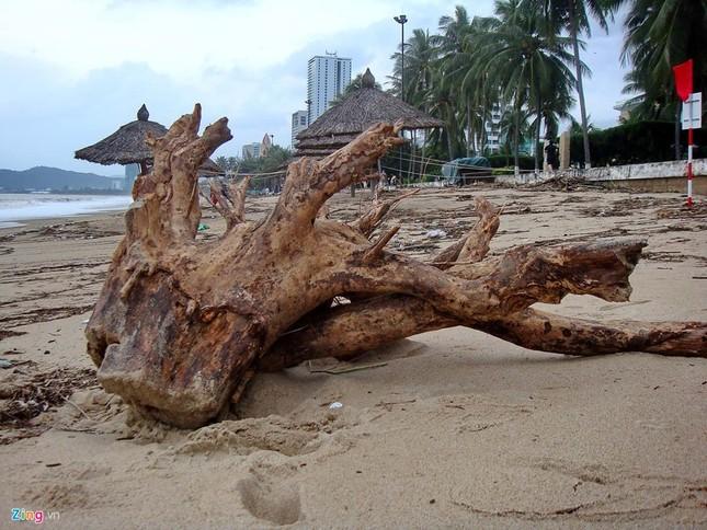 Bãi biển đẹp nhất thế giới xác xơ sau lũ - ảnh 7