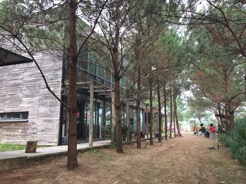 Ba khu nghỉ tách biệt giữa 'rừng' cách Hà Nội chưa đầy 30 km  - ảnh 1