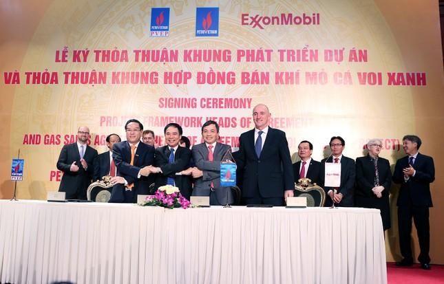 Phát triển dự án mỏ khí lớn nhất Việt Nam - ảnh 1