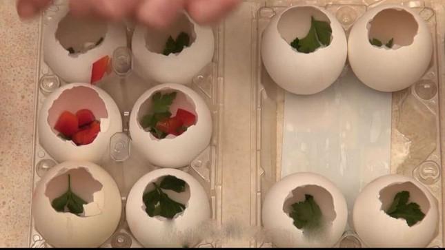 Cách làm món thịt đông trong vỏ trứng gà cực bắt mắt đón tết - ảnh 8