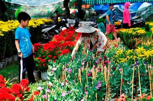 Đường phố Sài Gòn ngập hoa, nhộn nhịp không khí Tết - ảnh 7
