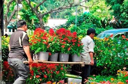 Đường phố Sài Gòn ngập hoa, nhộn nhịp không khí Tết - ảnh 6