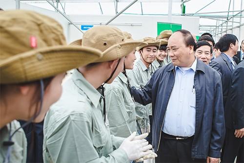 Thủ tướng muốn có gói tín dụng 100.000 tỷ đồng cho nông nghiệp công nghệ cao - ảnh 1
