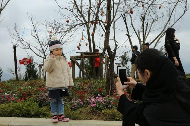 Du xuân, trẩy hội khèn, hoa tại Fansipan Legend - ảnh 5
