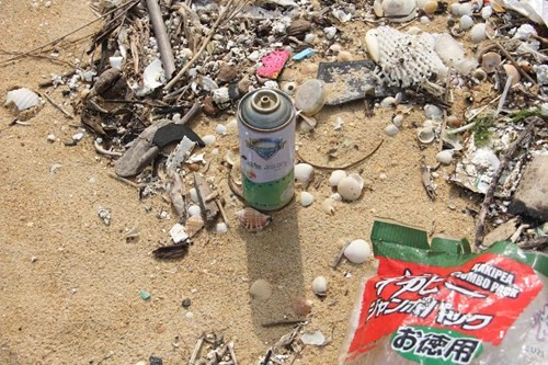 Thu gom rác thải, dầu vón cục dạt vào bờ biển - ảnh 2