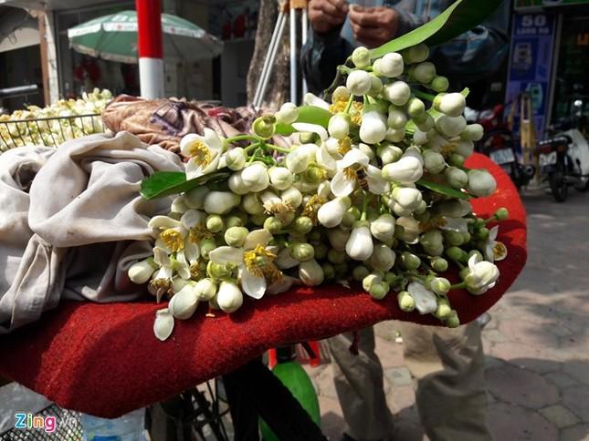 Kiếm tiền bằng việc mang hoa bưởi ra phố - ảnh 1