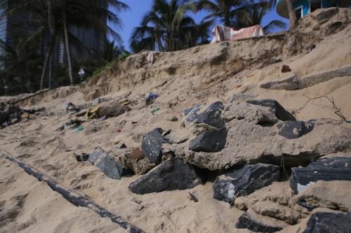 Bí thư Đà Nẵng: Đừng tiếc tiền cho môi trường mà đánh mất biển - ảnh 1