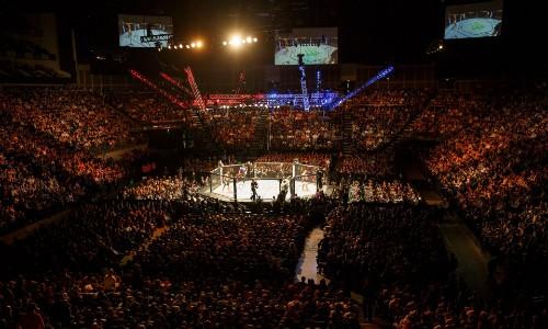 Ngành công nghiệp tỷ đôla của võ MMA - ảnh 1