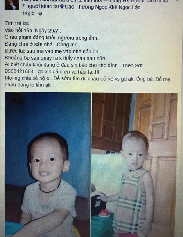 Tổ chức tìm kiếm bé trai 27 tháng tuổi mất tích tại nhà - ảnh 1