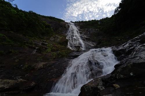 Huế muốn xây cáp treo tại vườn quốc gia Bạch Mã - ảnh 2