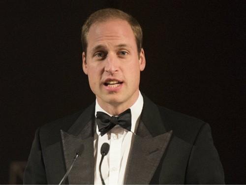 Hoàng tử Anh William lần đầu tiên đến Việt Nam - ảnh 1