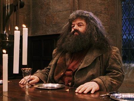 Dàn sao phim 'Harry Potter', ngày ấy và bây giờ - ảnh 11