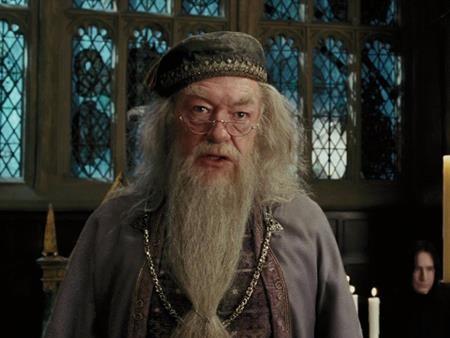Dàn sao phim 'Harry Potter', ngày ấy và bây giờ - ảnh 17