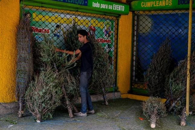 Giáng sinh buồn nhất của người Venezuela - ảnh 1