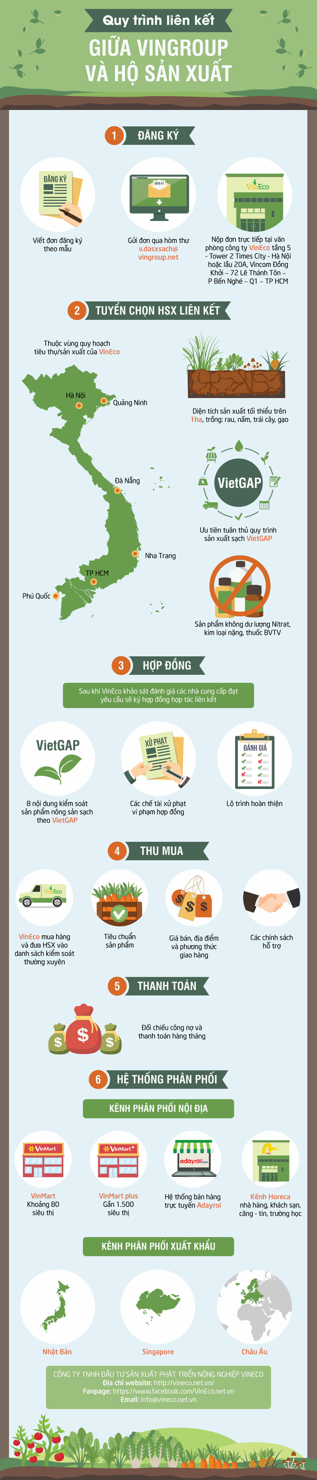 Mục sở thị mô hình liên kết nâng chất nông sản Việt - ảnh 1