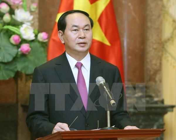 Chủ tịch nước Trần Đại Quang gửi thông điệp năm mới - ảnh 1