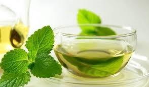5 loại trà giúp chữa tiêu chảy hiệu quả - ảnh 2