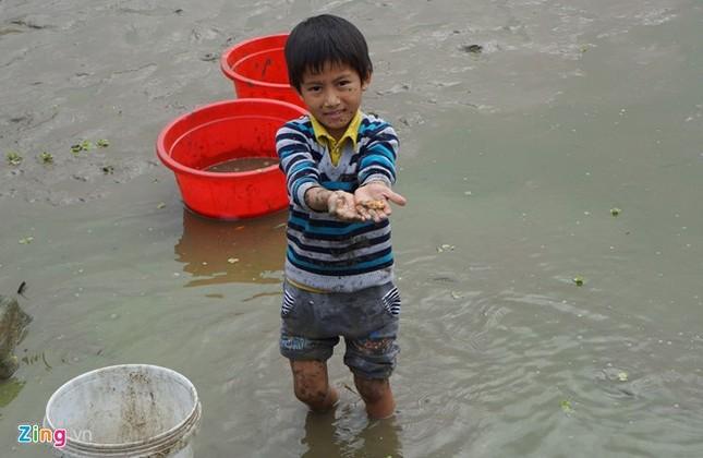 Lội bùn thu hoạch cá chép trước ngày ông Táo về trời - ảnh 4