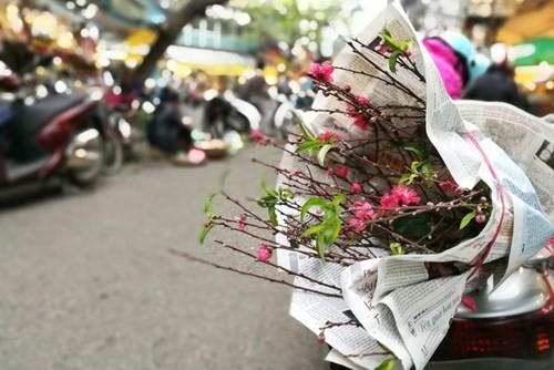 Sắm Tết ở 'chợ nhà giàu' giữa phố cổ Hà Nội - ảnh 10