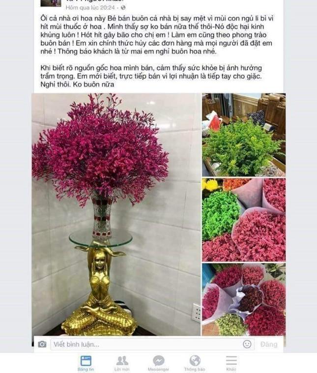 Hoa sao nhuộm phẩm màu Trung Quốc tràn ngập chợ Tết - ảnh 1