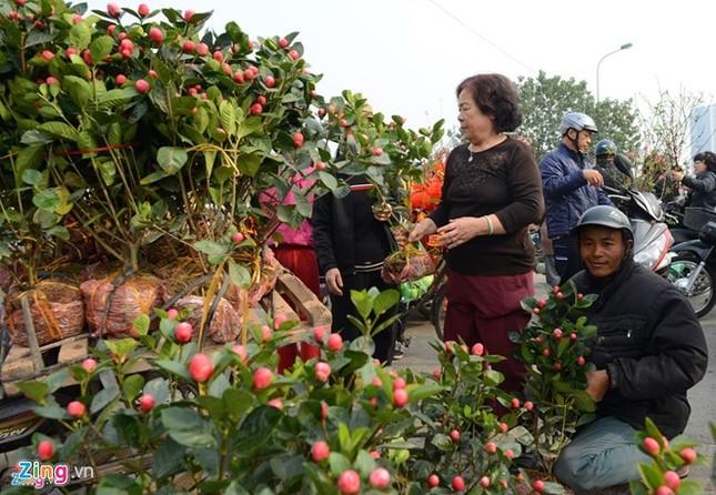 Người nước ngoài kể chuyện Tết Việt không cô đơn - ảnh 1