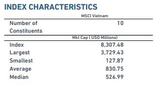 Duy nhất 2 cổ phiếu Việt Nam vào rổ MSCI Frontier Markets Index - ảnh 2