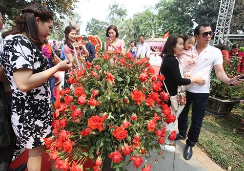 Sở Văn hóa yêu cầu bỏ hoa giả, rút ngắn lễ hội hoa hồng - ảnh 1
