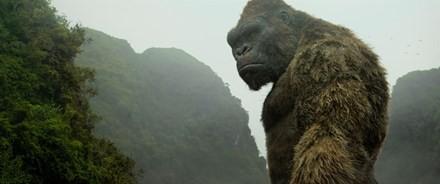 Những kỳ quan Việt Nam xuyên suốt siêu phẩm Kong - ảnh 1