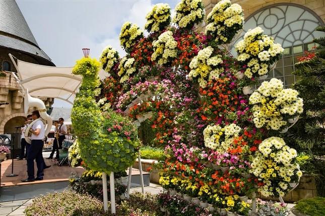 Lạc thiên đường muôn sắc hoa Sun World Ba Na Hills - ảnh 8