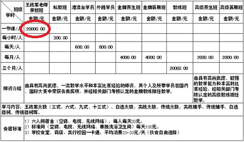 Thái Cực Quyền - môn võ hái ra tiền ở Trung Quốc - ảnh 2