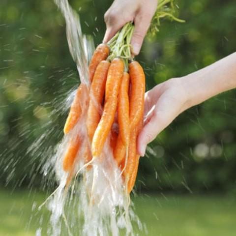 19 sai lầm nghiêm trọng khi xào nấu, ăn rau xanh - ảnh 1