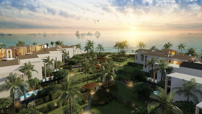 Chính thức ra mắt Sun Premier Village Ha Long Bay - ảnh 1