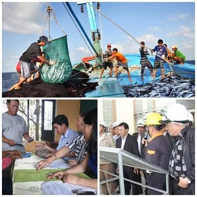 Quyết liệt giải quyết sự cố môi trường biển 4 tỉnh miền Trung - ảnh 1