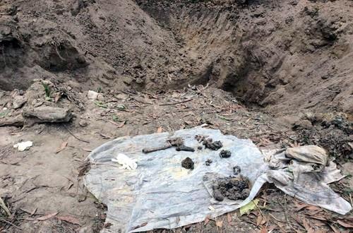 Manh mối tìm mộ tập thể 150 liệt sĩ trong sân bay Biên Hòa - ảnh 2