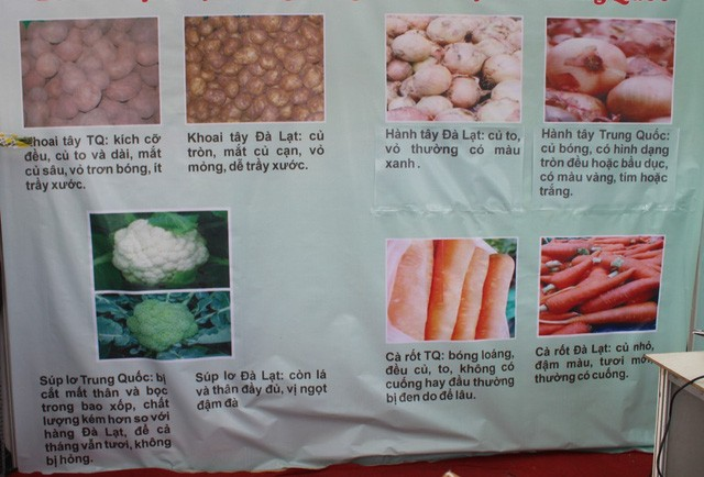 Đà Lạt nhập trên 100 tấn khoai tây Trung Quốc - ảnh 1