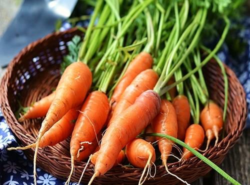 Những thực phẩm giúp thanh lọc, thải độc cơ thể nên sử dụng mỗi ngày - ảnh 1