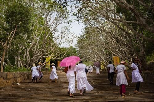 Ghé thăm chiếc nôi của Phật giáo - ảnh 2