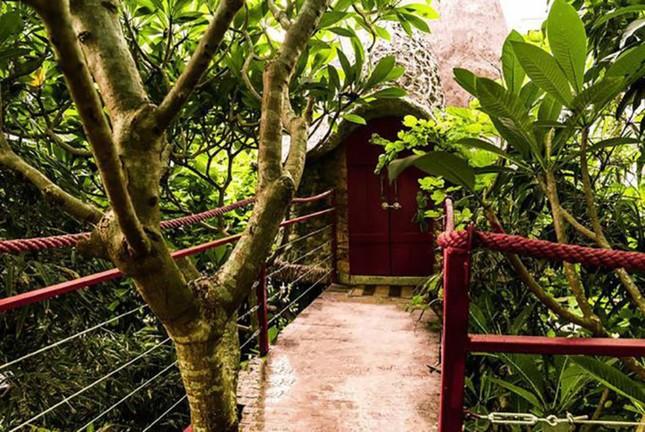 Những ngôi nhà trên cây ở Việt Nam - ảnh 3