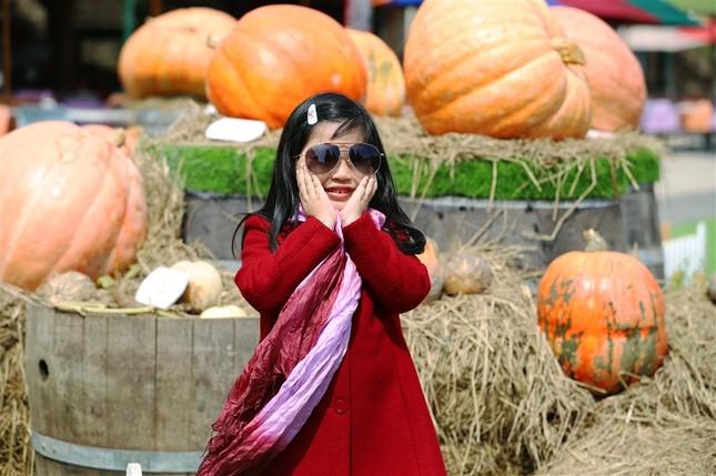 """Halloween """"chất hơn nước cất"""" tại Sun World Ba Na Hills - ảnh 10"""
