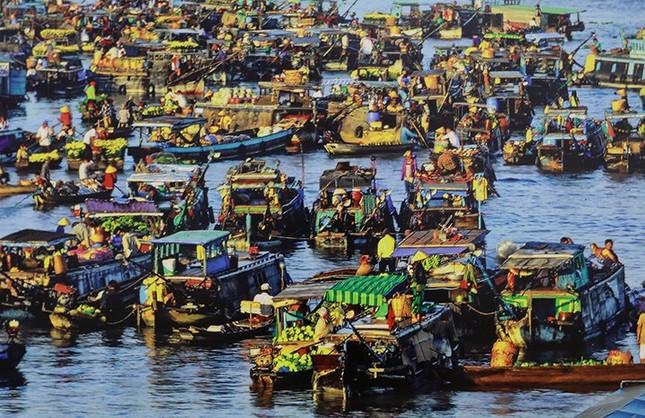 100 bức ảnh đẹp Việt Nam được giới thiệu tới đại biểu dự APEC 2017 - ảnh 14