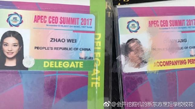 Triệu Vy đến Việt Nam tham dự APEC? - ảnh 2