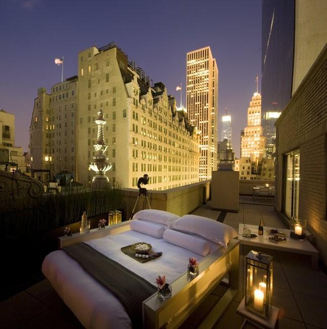 Phòng khách sạn 'trần trụi với thiên nhiên' - ảnh 1